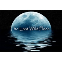 Strictly Country - Lacy J Dalton - Last Wild Place