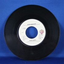 "John Anderson - 45 LP ""Black Sheep"" & ""Call On Me"""